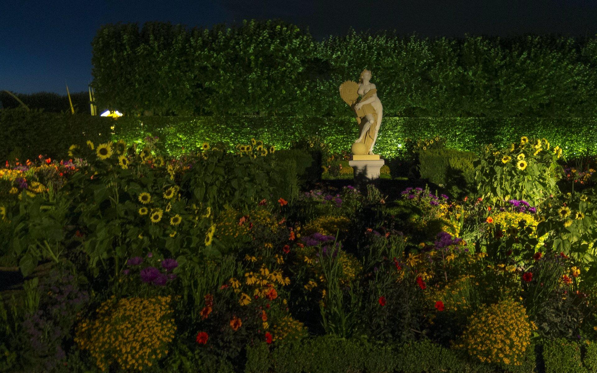 Illumination: niederdeutscher Blumengarten