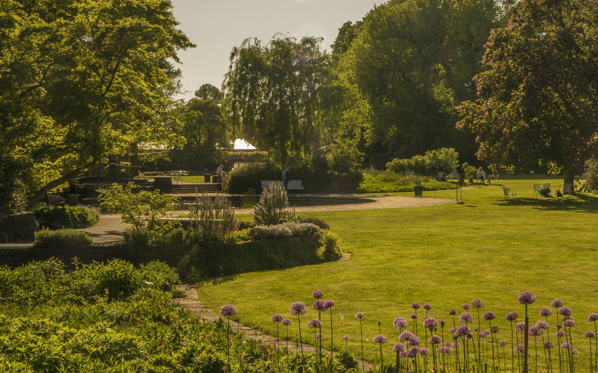 Frühjahrsblumen im Stadtpark