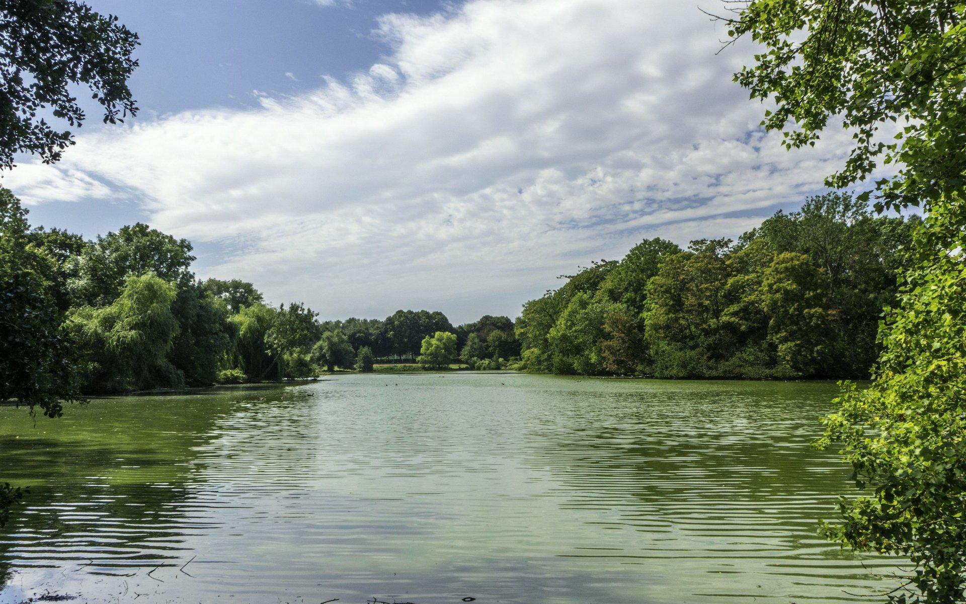 Teich Bürgerpark in Braunschweig