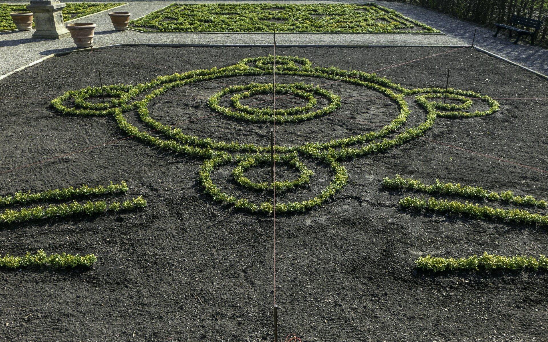 Aufbau eines Beets im Renaissancegarten des Großen Gartens