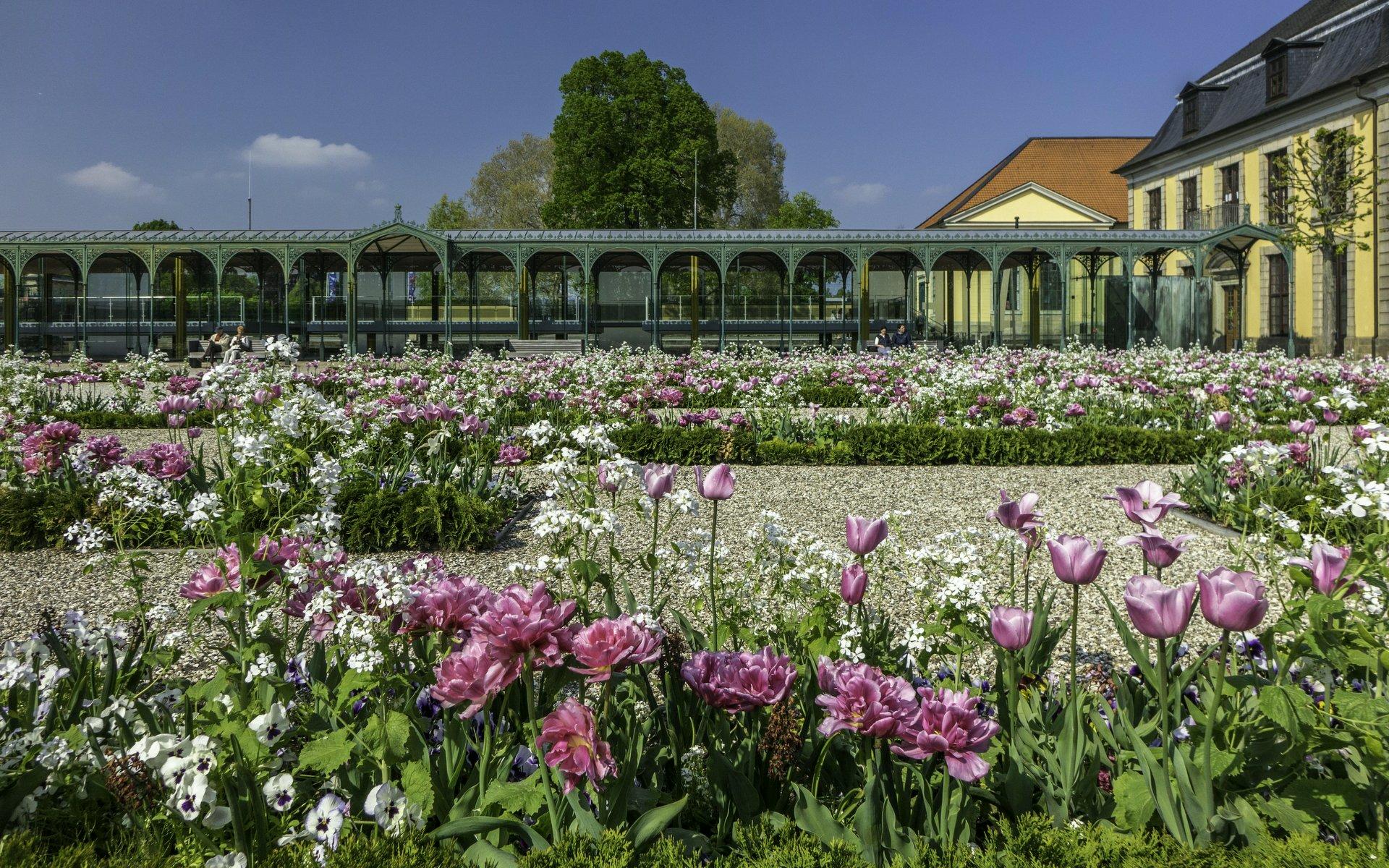 Blumengarten im Großen Garten