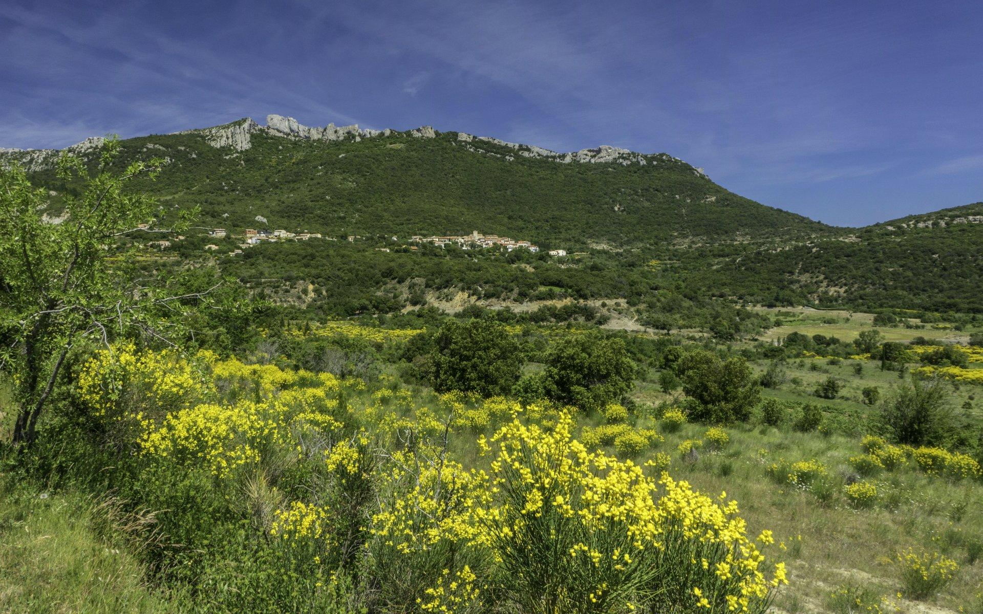 Blick auf Duilhac-sous-Peyrepertuse und Château de Peyrepertuse von der Straße nach Cucugnan