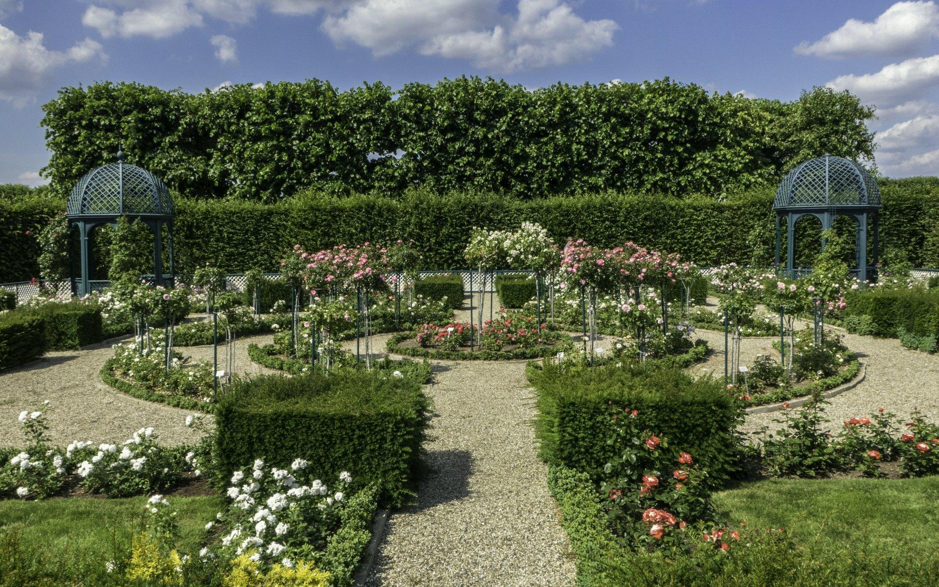 Niederdeutscher Rosengarten im Großen Garten