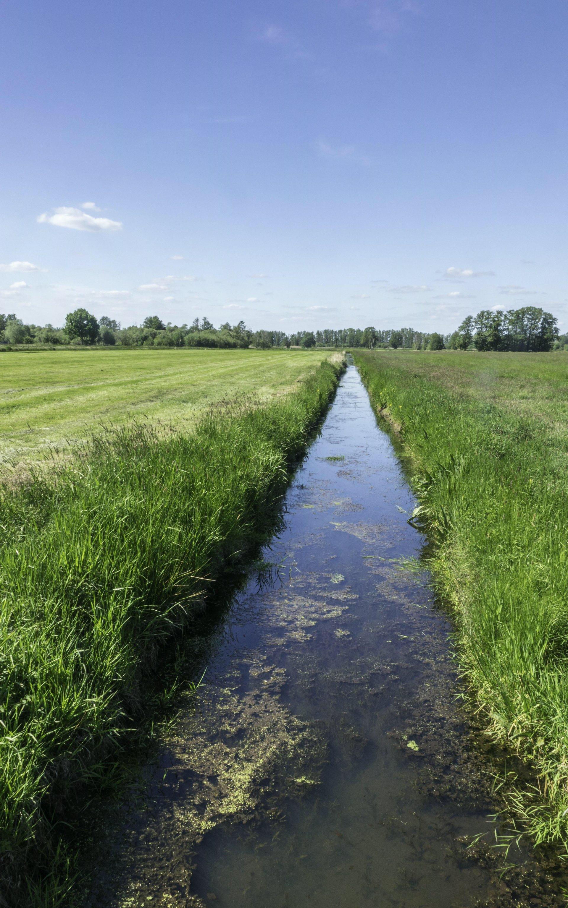 Kanal am Mastendamm bei Hagenburg