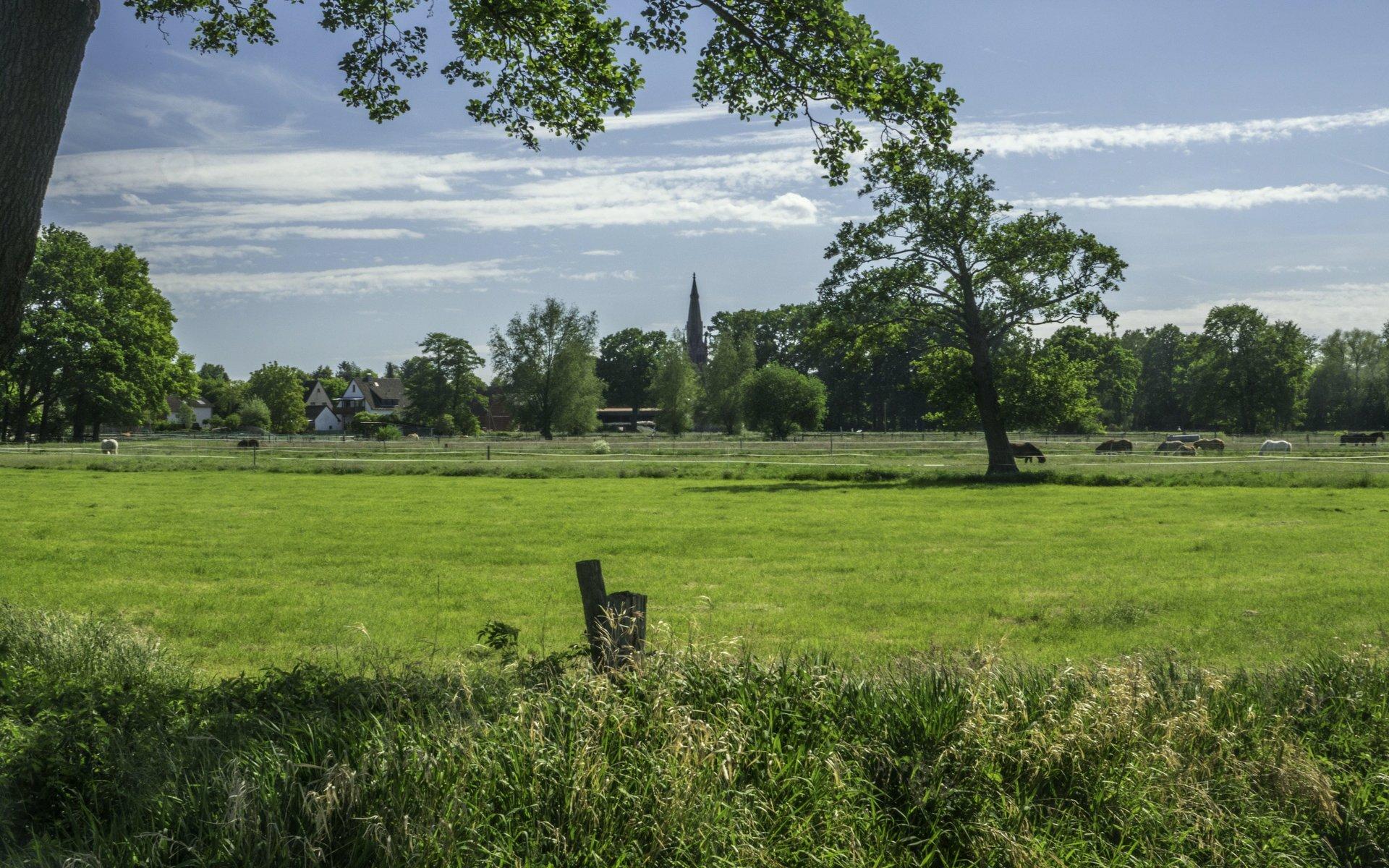 Landschaft am Mastendamm bei Hagenburg
