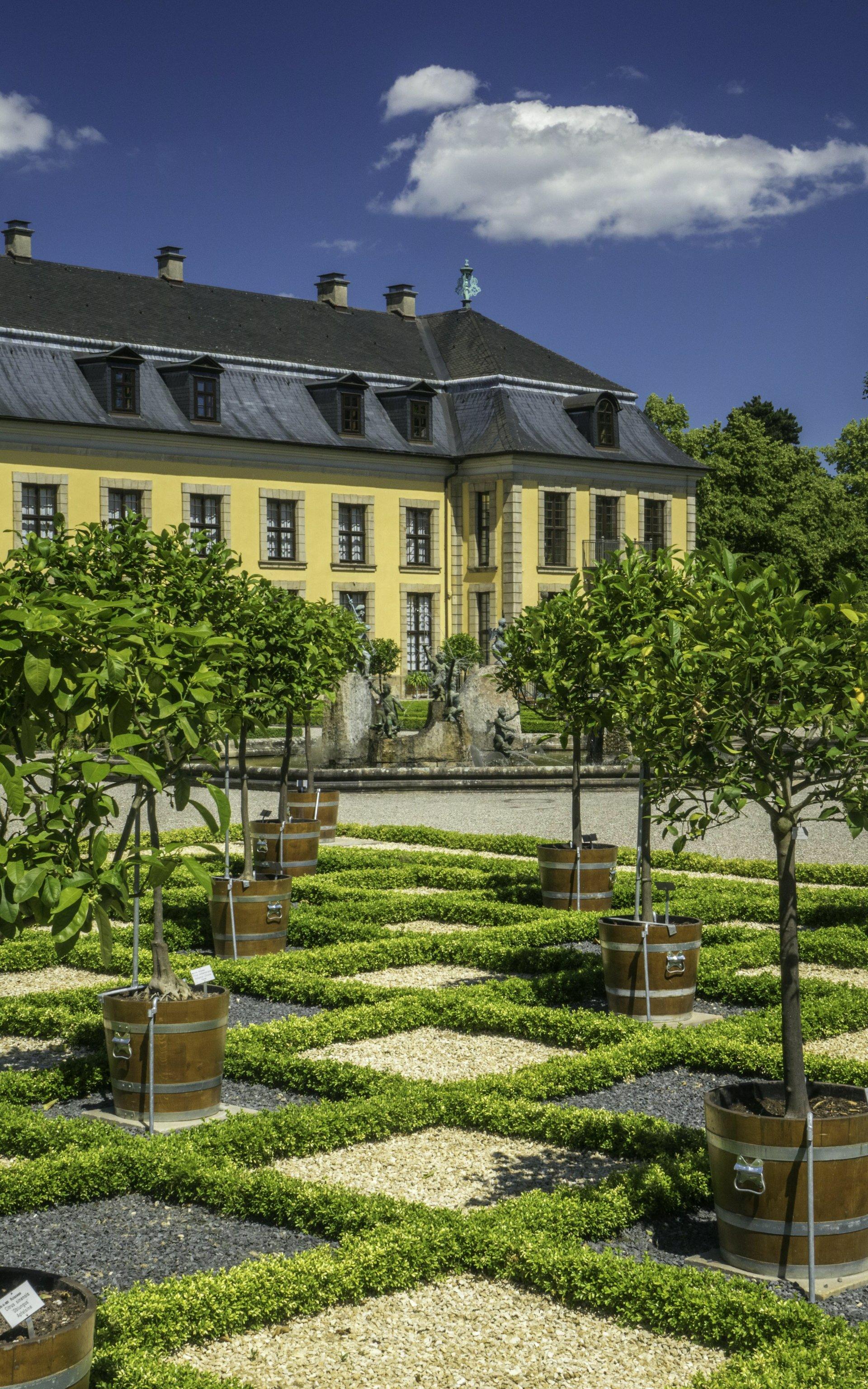 Orangenparterre im Großen Garten